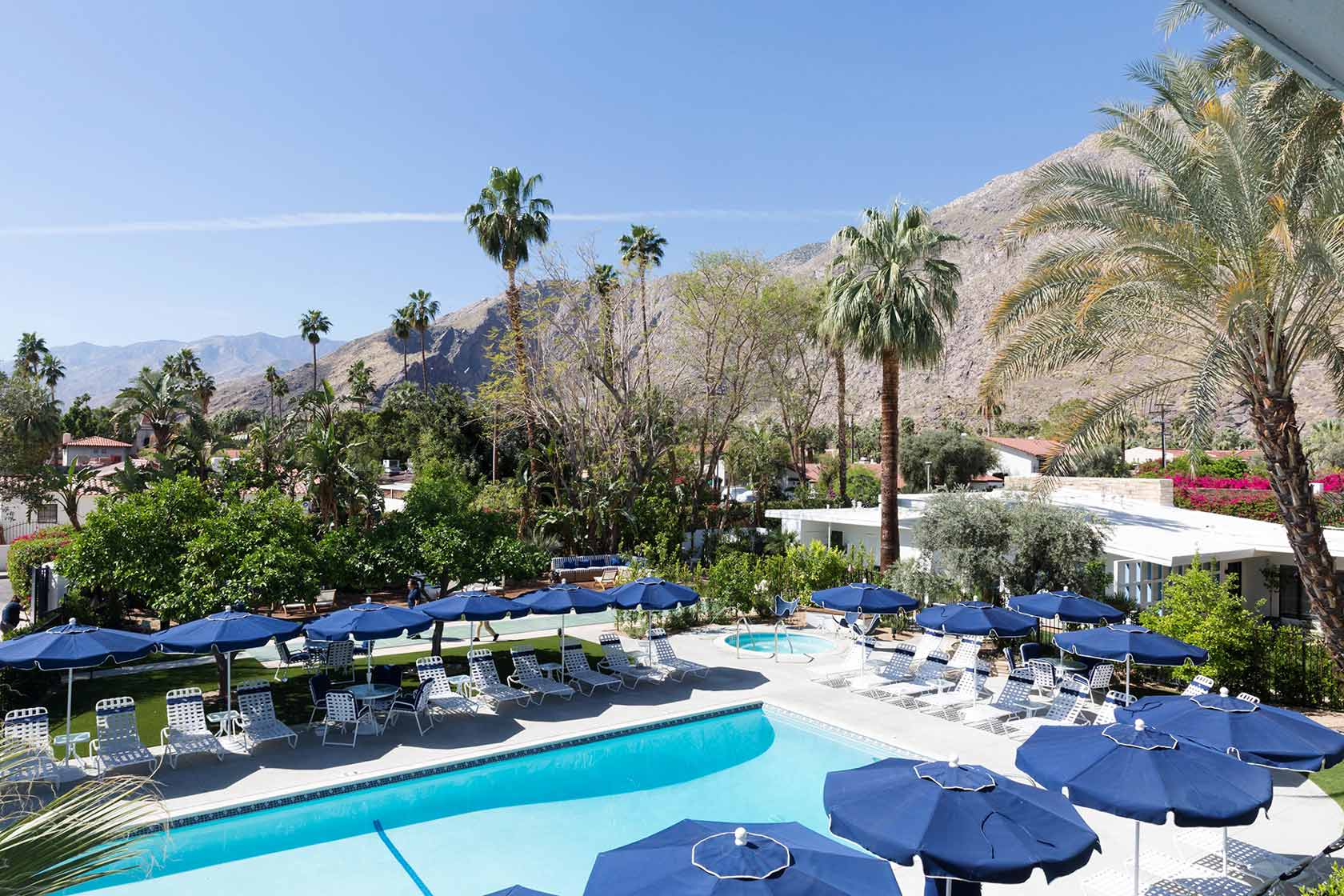 Discover Holiday House Palm Springs